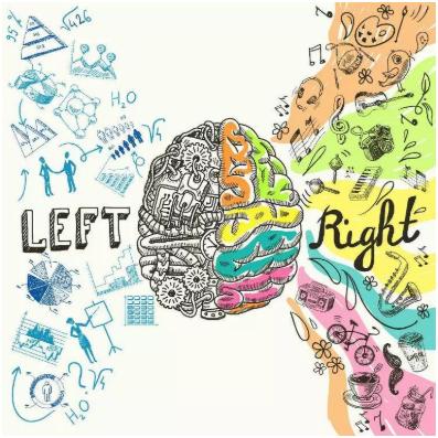 mapa-mental-cerebro