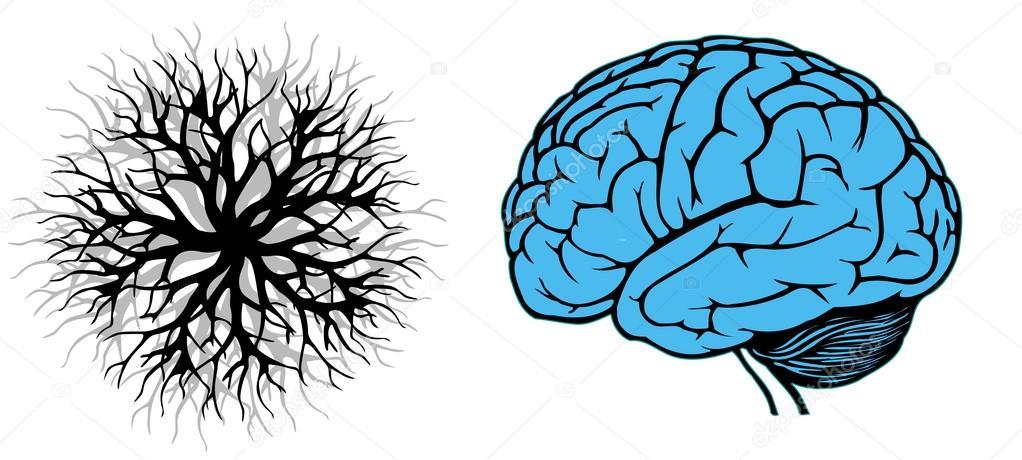 ramificacoes-cerebro-mapa-mental